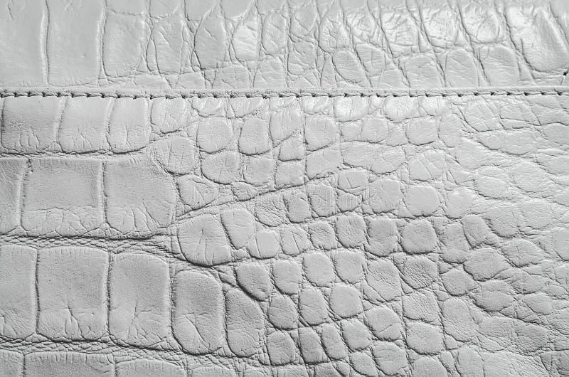 Белая текстура жемчуга кожи гада стоковое изображение rf