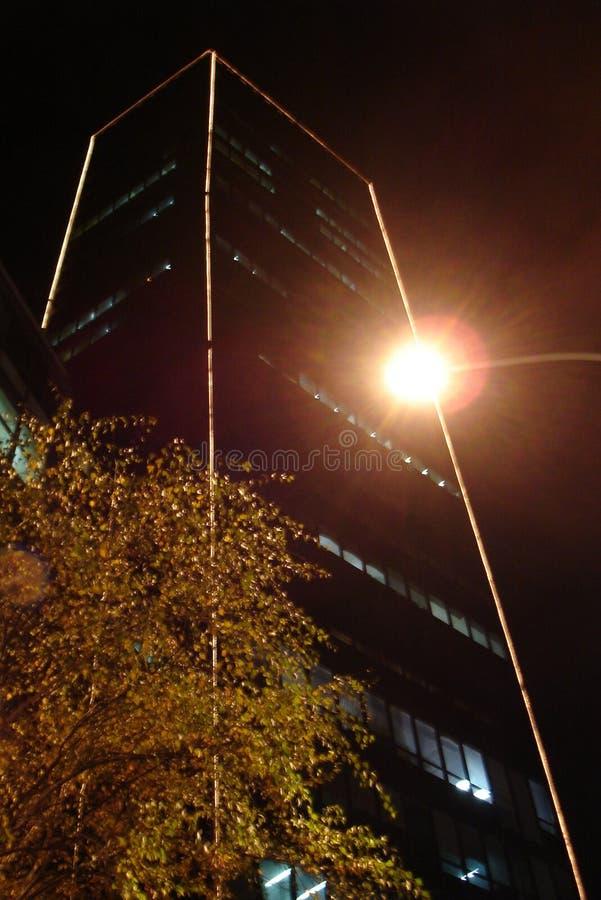 Белград на ноче на день Новых Годов стоковое изображение rf