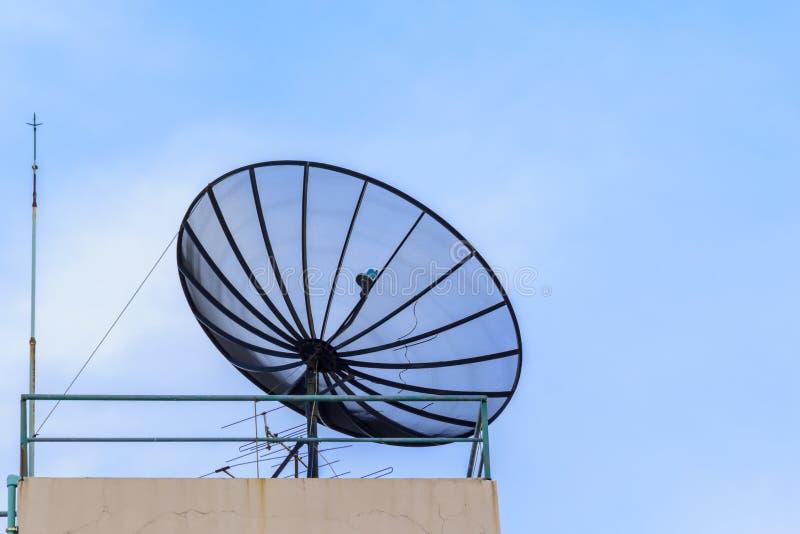 Download белизна вектора тарелки изолированная иллюстрацией спутниковая Стоковое Изображение - изображение насчитывающей средство, дело: 40577047