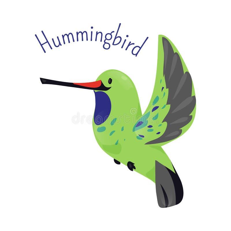 белизна вектора hummingbird предпосылки изолированная иллюстрацией иллюстрация вектора