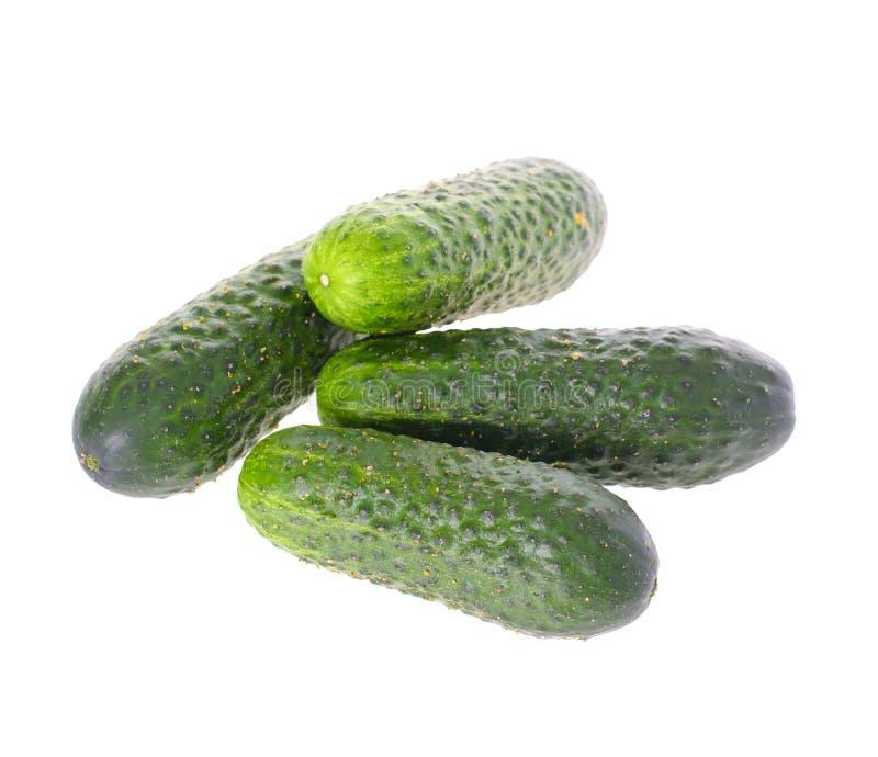 Download белизна еды огурца предпосылки свежая зеленая изолированная вегетарианская Стоковое Изображение - изображение насчитывающей кашевар, ингридиент: 40578687