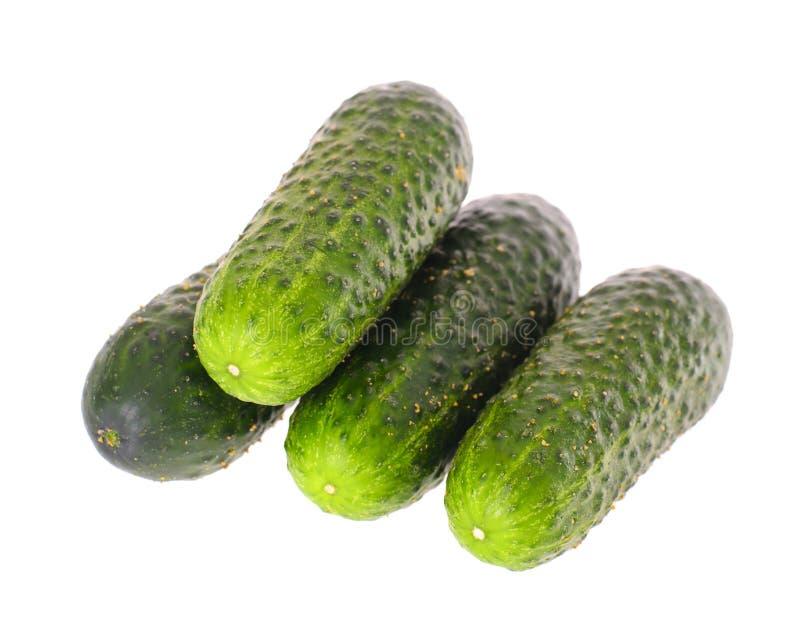 Download белизна еды огурца предпосылки свежая зеленая изолированная вегетарианская Стоковое Изображение - изображение насчитывающей bowie, природа: 40578691