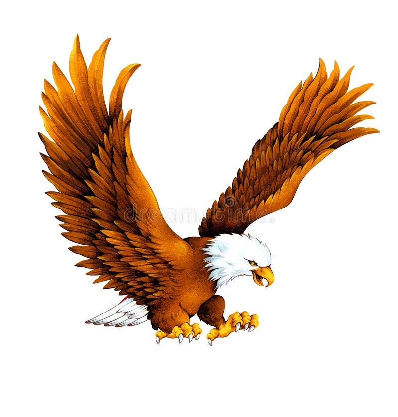 белизна орла головная бесплатная иллюстрация