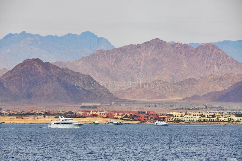 Белизна плавать в Красном Море на предпосылке Mountaining стоковые фото