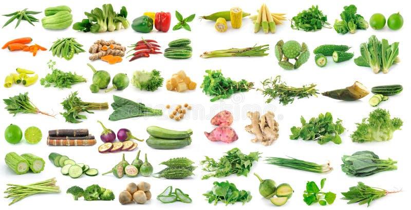белизна свежего овоща предпосылки стоковая фотография