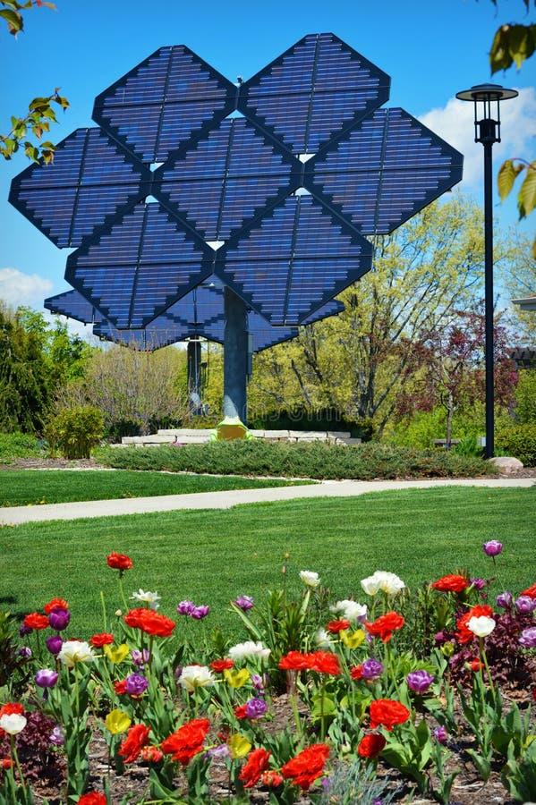белизна солнца панели энергии изолированная рукой солнечная стоковое фото rf