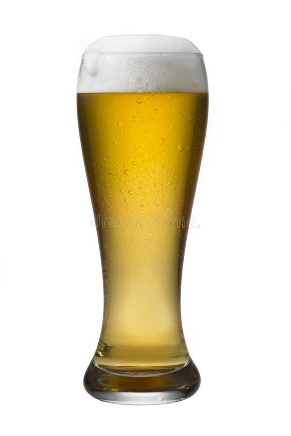 белизна стекла пива изолированная стоковые фото