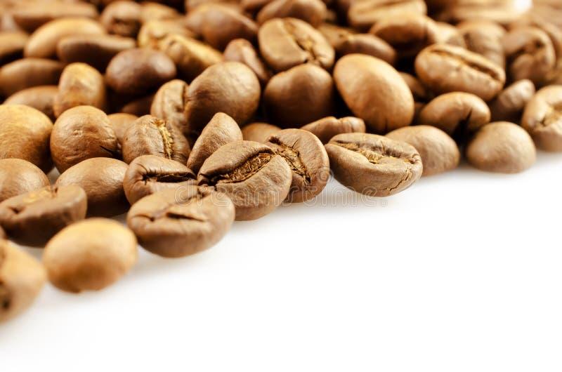 белизна студии съемки фасолей предпосылки изолированная кофе стоковая фотография rf