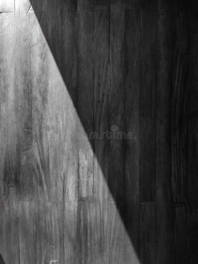 белизна улитки тени предпосылки светлая стоковое фото rf