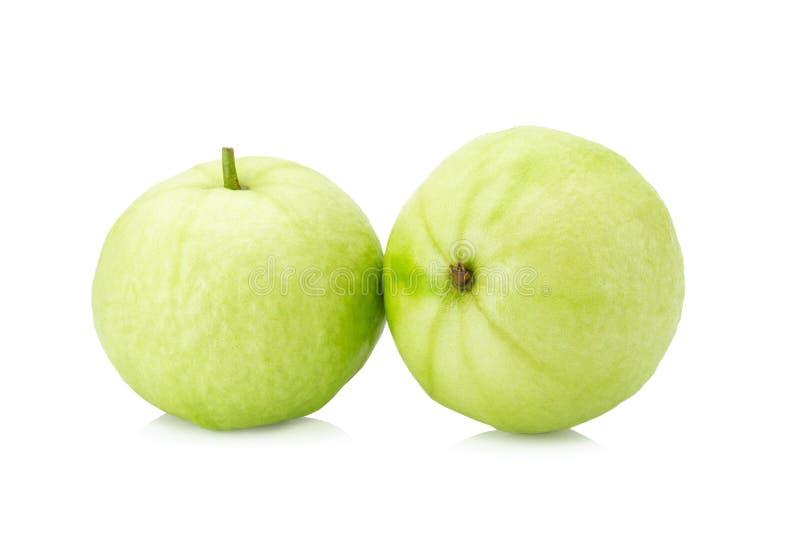 белизна guava плодоовощ предпосылки стоковая фотография