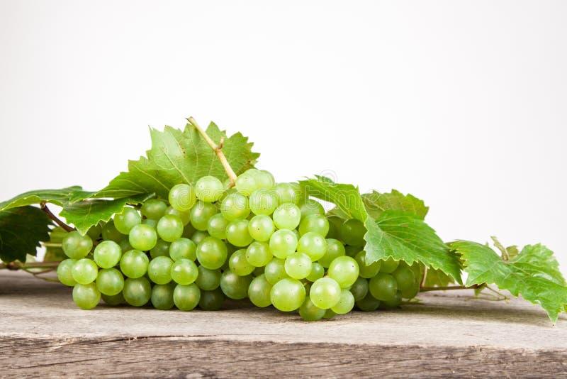 белое вино стоковые изображения rf