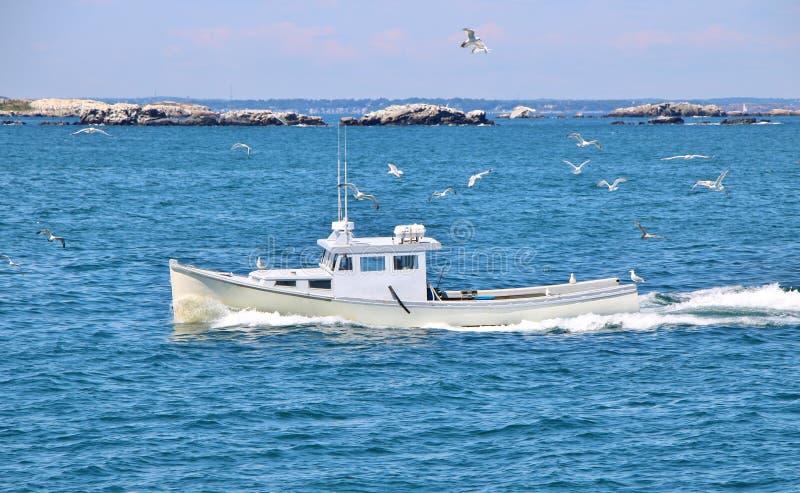 Белое плавание шлюпки в океане стоковое изображение rf