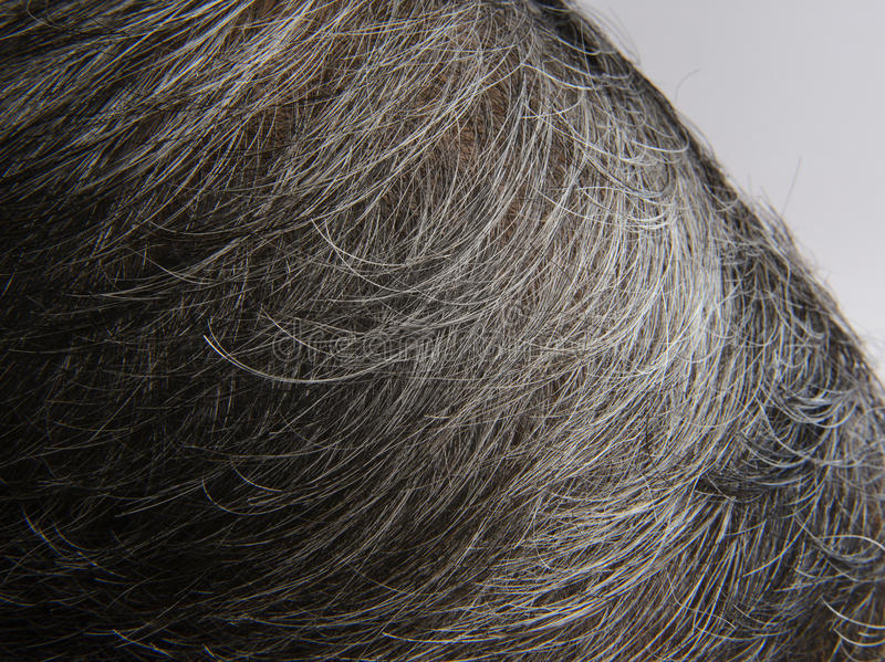 Белое с волосами головы стоковая фотография