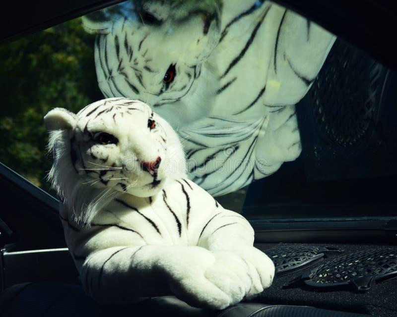 Белое чучело тигра стоковая фотография rf