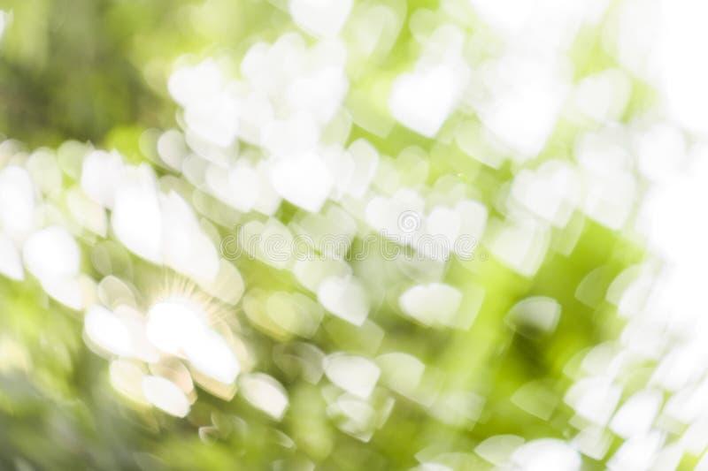 Белое bokeh сердца на зеленой предпосылке стоковые фото