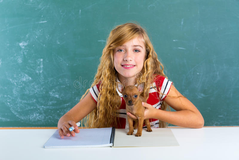 Белокурая девушка студента с собакой щенка на доске класса стоковые изображения