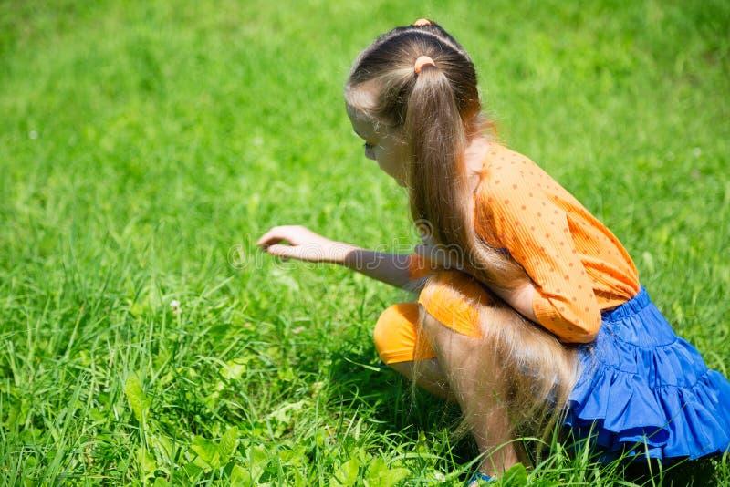 Белокурая девушка улавливает кузнечика стоковая фотография rf