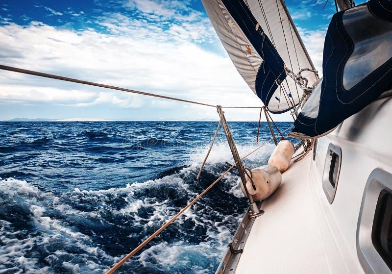 Белые ветрила яхт стоковые изображения rf