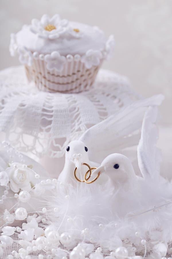 Белые голуби с кольцами стоковое фото rf