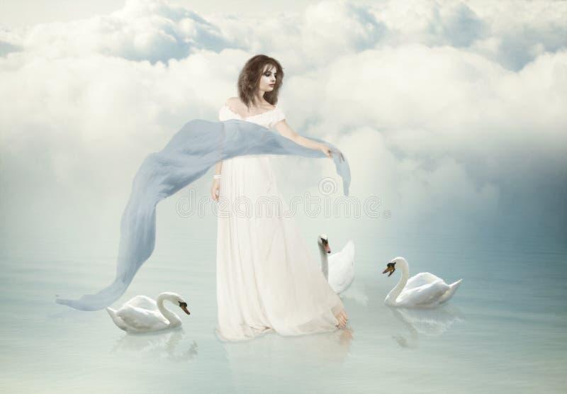 Белые лебеди иллюстрация штока