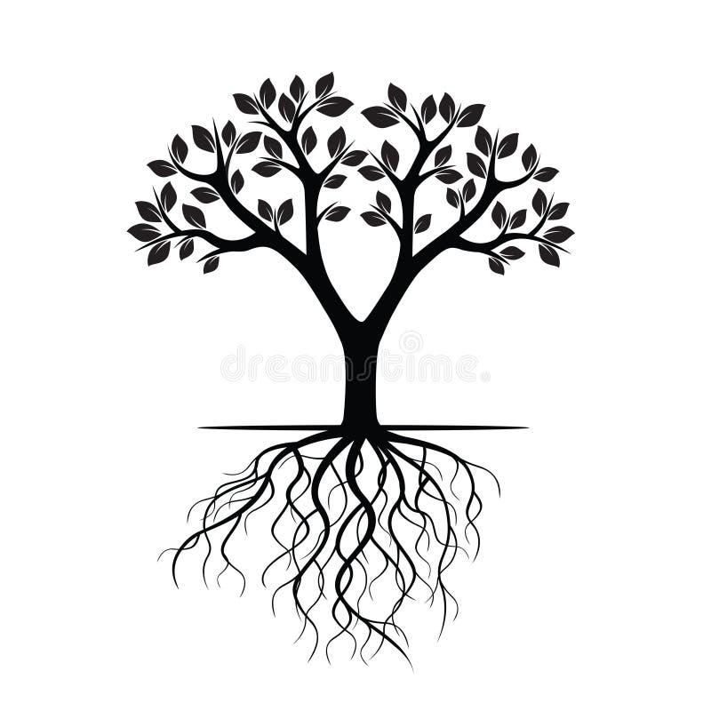 Белые дерево и корни также вектор иллюстрации притяжки corel бесплатная иллюстрация