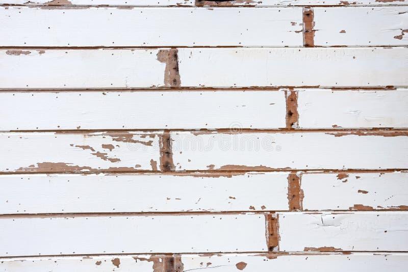 Белые деревянные предпосылки текстуры стоковые изображения