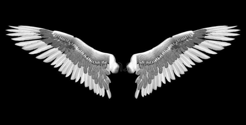 белые крыла бесплатная иллюстрация
