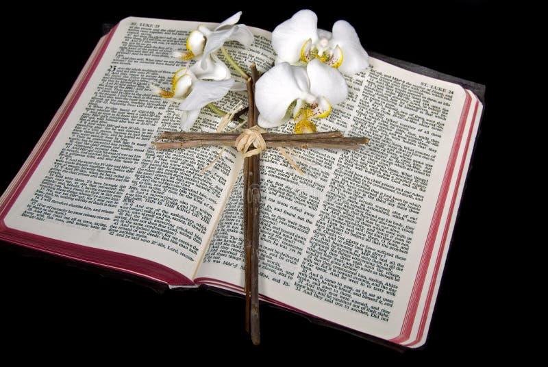 Белые орхидеи с крестом на библии стоковое фото