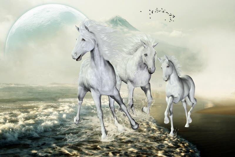 Белые лошади на пляже бесплатная иллюстрация