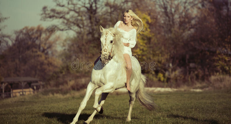 Белый ангел ехать чисто белая лошадь стоковые фото