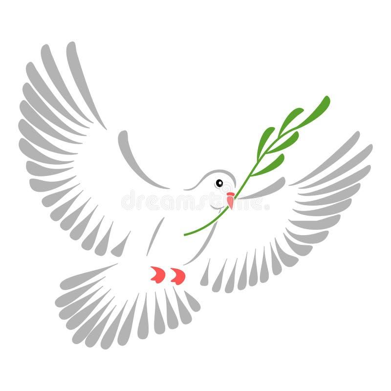 Белый голубь иллюстрация вектора