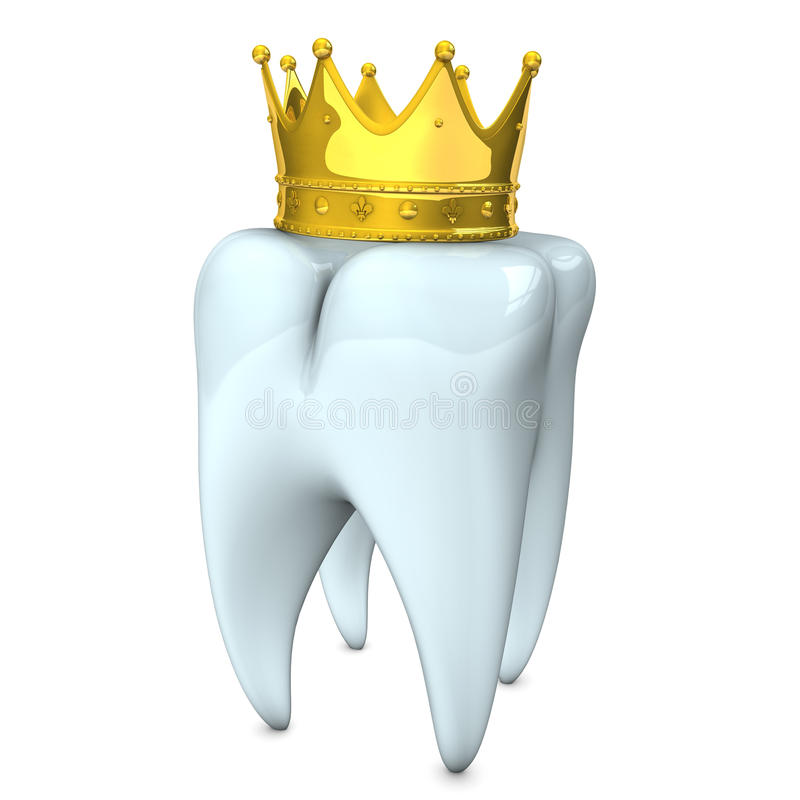 Крона зуба иллюстрация штока