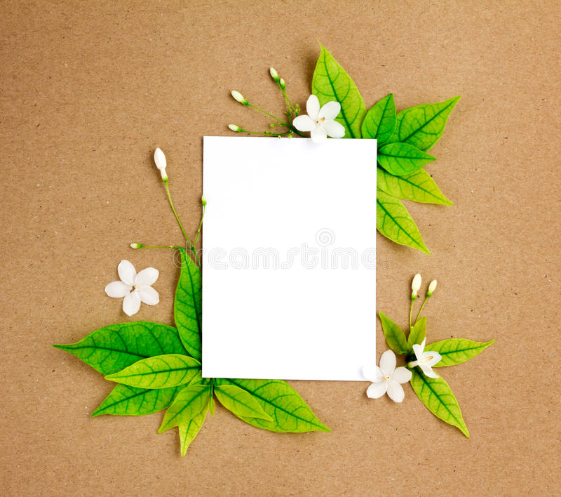 Белый лист чистого листа бумаги с свежим borde листьев зеленого цвета весны стоковое фото rf