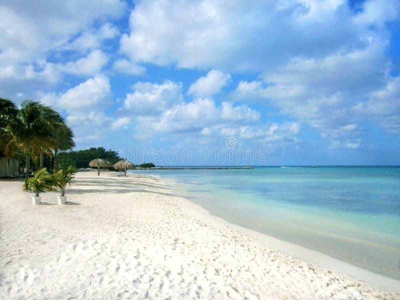 Белый песчаный пляж с пальмами стоковые изображения rf