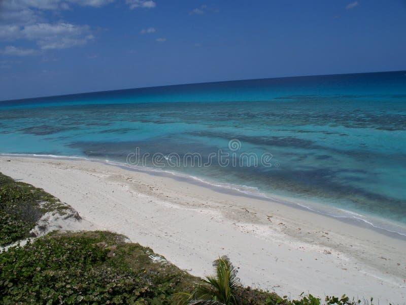 Белый пляж океаном стоковое фото rf