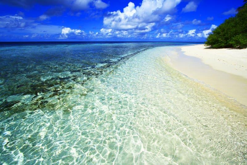 Белый пляж песка коралла стоковое изображение rf