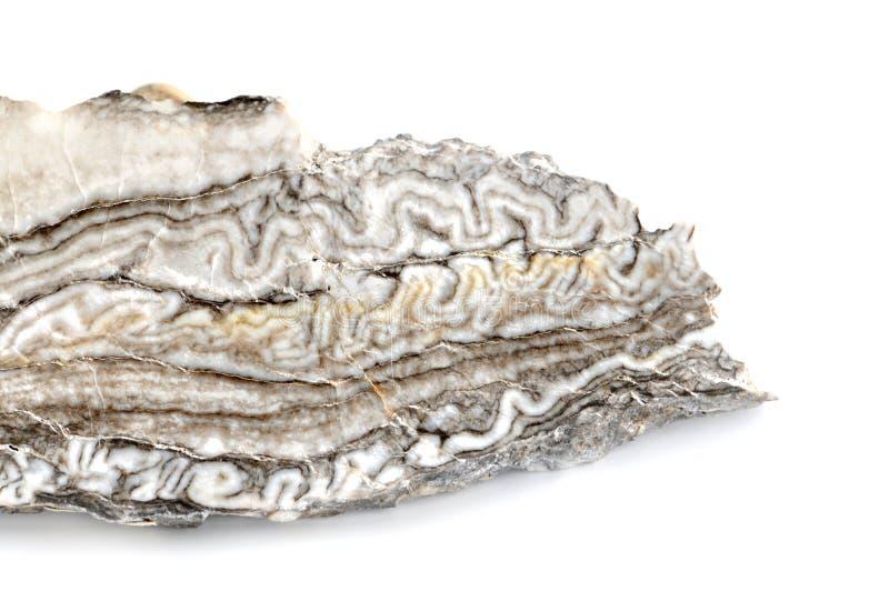 Белый серый агат алебастра стоковое изображение