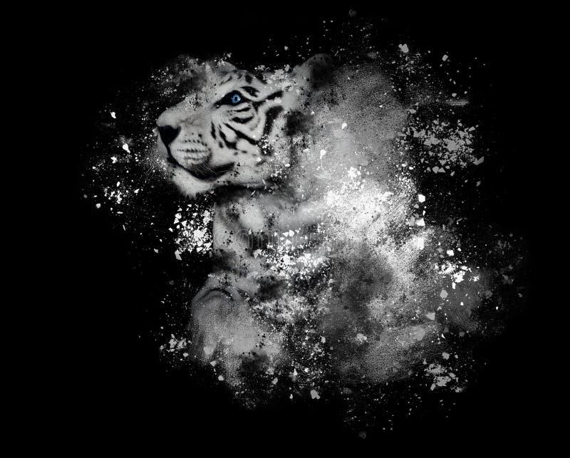 Белый тигр Бенгалии с краской искусства на черноте стоковая фотография