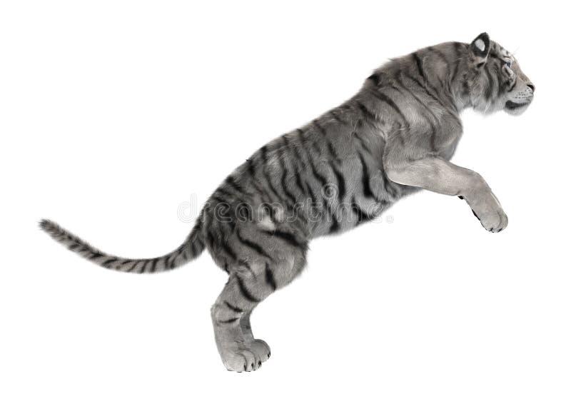 Белый тигр бесплатная иллюстрация