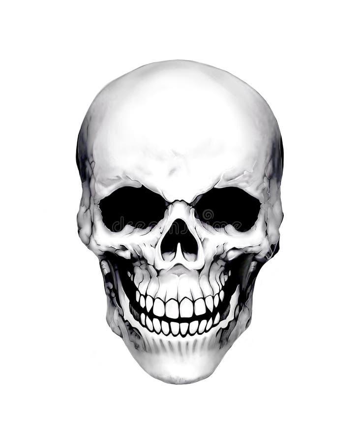 Белый череп иллюстрация вектора