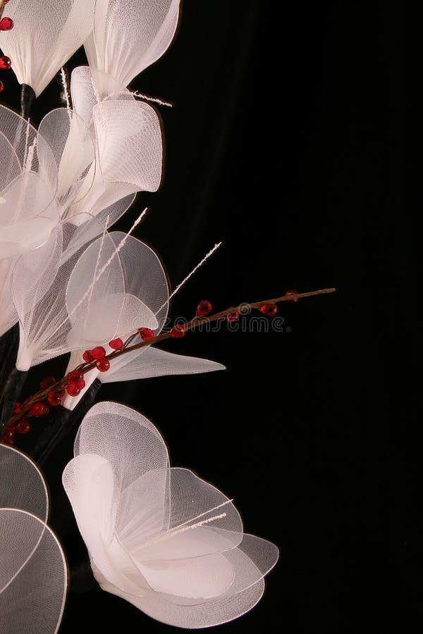 Белый шелк стоковое фото rf