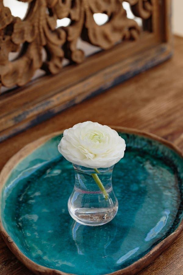 Белый лютик в стекле на керамическом подносе стоковое изображение