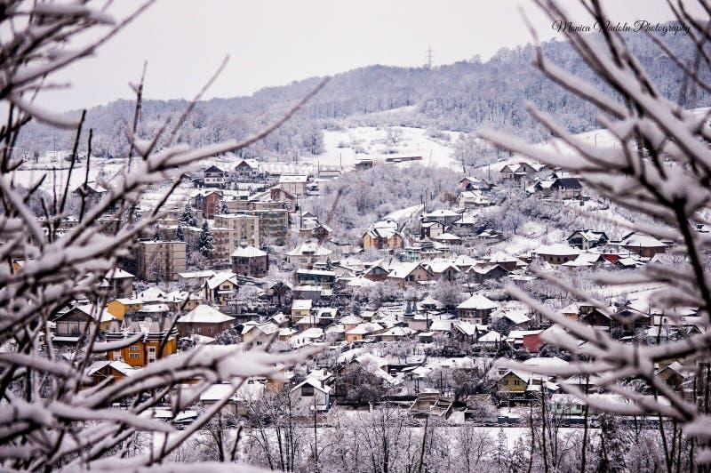 Белый январь стоковое изображение rf