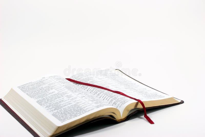 библия открытая стоковое изображение