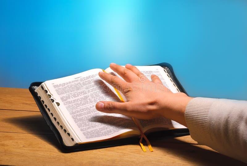 Библия руки стоковые изображения
