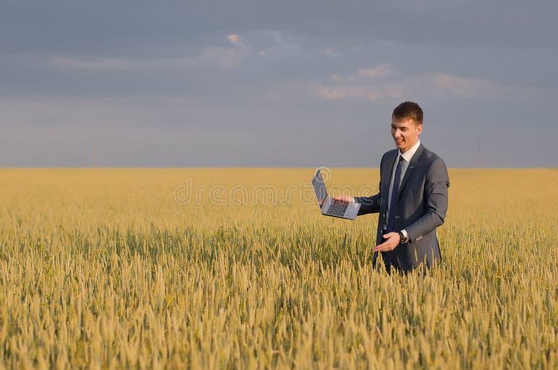 Бизнесмены в пшеничном поле стоковое фото rf