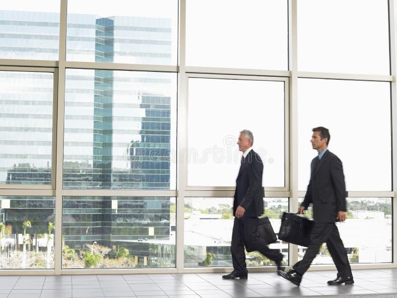 Бизнесмены с портфелями идя в офис стоковая фотография rf