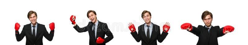 Бизнесмен боксера изолированный на белизне стоковое изображение rf