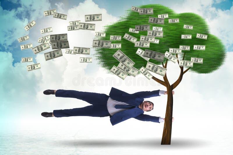 Бизнесмен дунутый далеко от дерева денег стоковые фотографии rf
