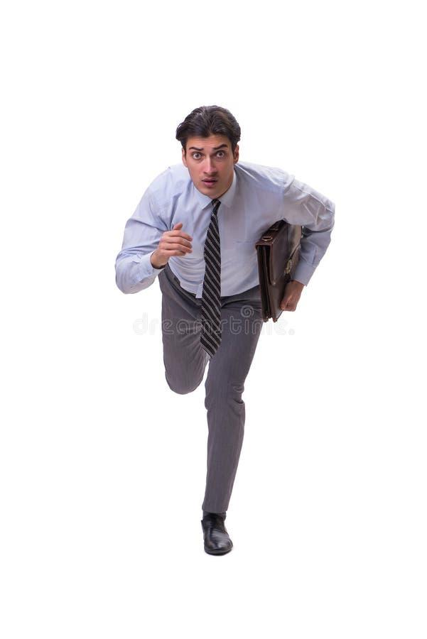 Бизнесмен изолированный на белой предпосылке стоковые фотографии rf